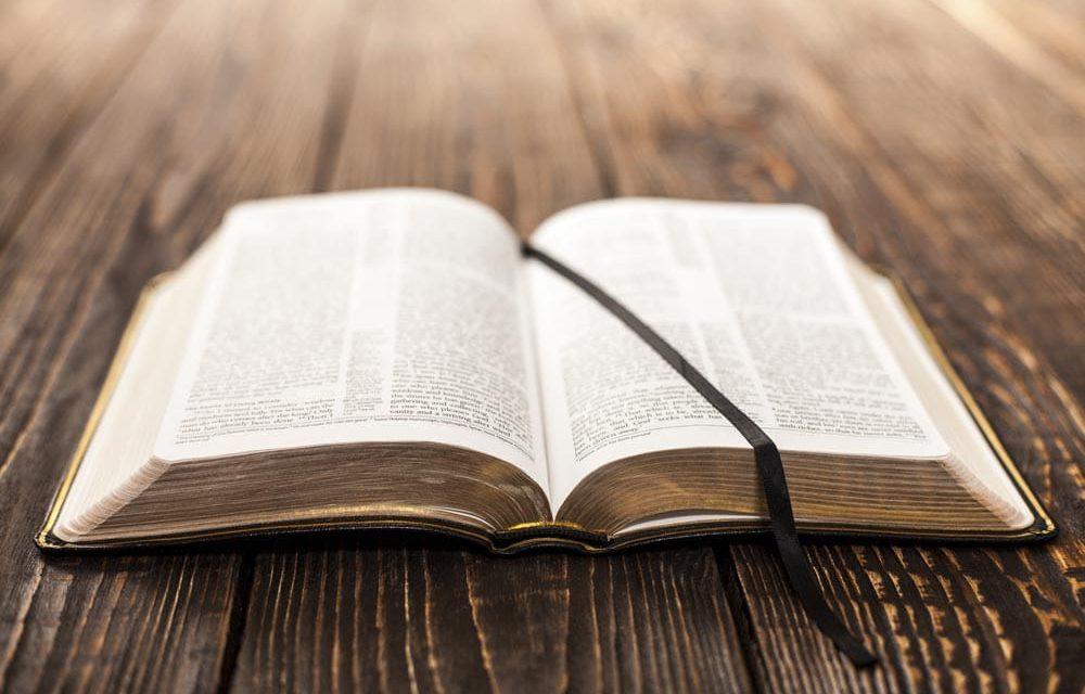 Tua palavra, luz para meus passos! (CF. Sl 118)