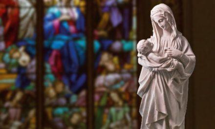 Maria é a mãe da providência
