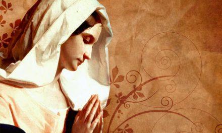 Maria nos ensina todos os dias