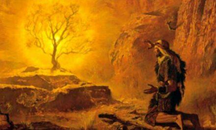 """""""Eu sou aquele que sou… Eu sou enviou-me a vós"""" (Ex 3,14)"""