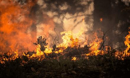 Baixa umidade e ventos fortes aumentam alerta de queimadas