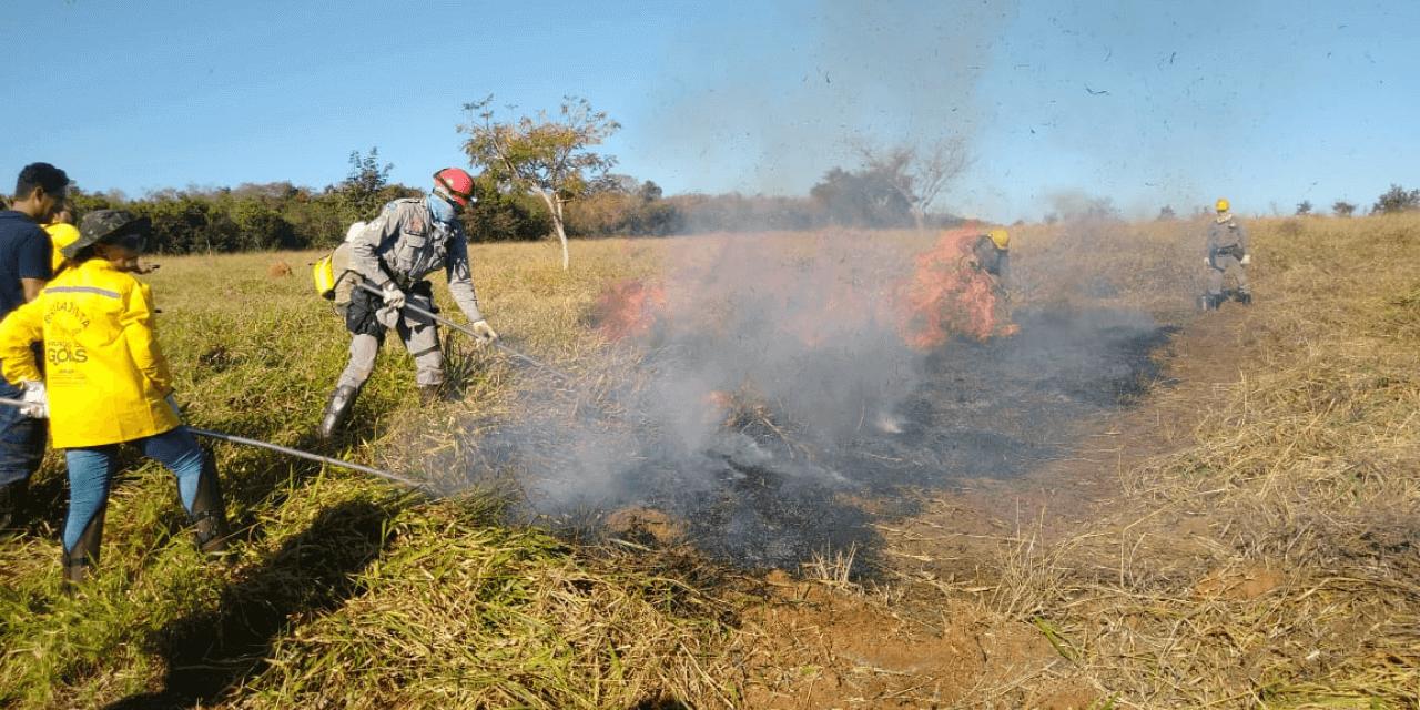 Sudoeste registra 307 queimadas em uma semana