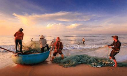 Dicastério Desenvolvimento Integral: respeito pela dignidade dos trabalhadores no mar