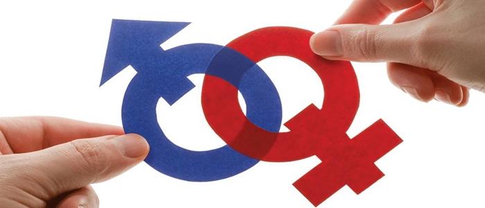 Ideologia de gênero deve ser combatida pois visa destruir a família
